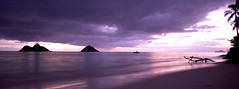 Lanikai (freshoceanair) Tags: ocean wood longexposure sea sky beach water clouds sunrise island hawaii roots driftwood lanikai mokuluaislands rabbitisland