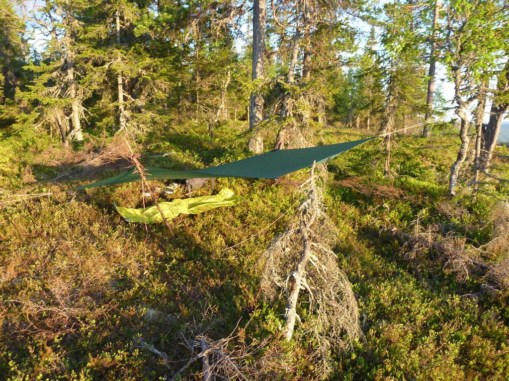 Overnatting på Krokskogen