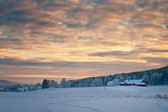 Gjerdrum - Desember 2010 (#2) (Krogen) Tags: winter nature norway landscape norge vinter december natur norwegen olympus scandinavia akershus desember romerike krogen landskap noreg skandinavia gjerdrum