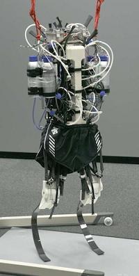 robot_atleta