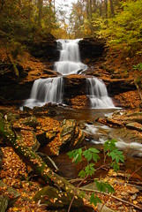 Tuscarora Falls - Ricketts Glen State Park (VermontDreams) Tags: autumn fall tuscarora waterfall pennsylvania falls foliage pa waterfalls rickettsglen ricketsglen rickettsglenstatepark luzernecounty october2010 tuscarorafalls wnywaterfallers