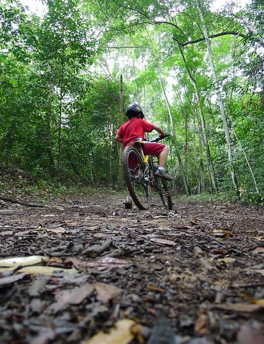 501 trail