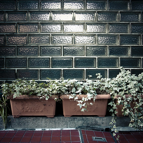 Glass Brick Wall, Potted Plants, Concrete Step and Red Tiles