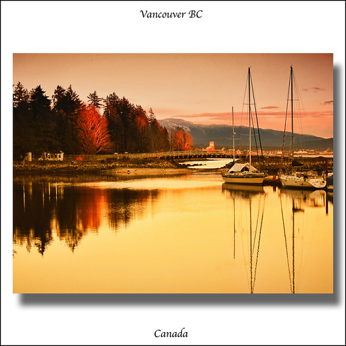 Sunset . Stanley Park . Vancouver