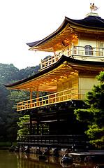 Shine (Aaron Webb) Tags: japan gold kyoto 京都 日本 金閣寺 kinkakuji goldleaf kyotojapan kinkakujitemple japanday6 googlemaybe