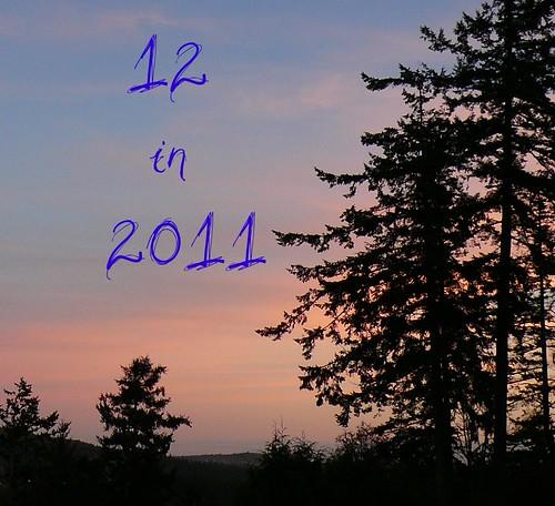 12in2011_Ravatar