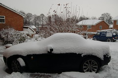 Snow December 2010 043