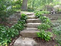 stepping stone stairs designed by wld