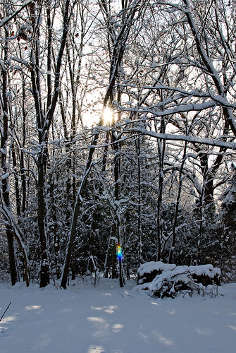 snow-backyard-sun