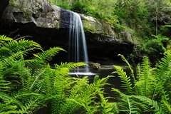 Lower Kalimna (mthomson34) Tags: waterfall lorne bestofaustralia lowerkalimna