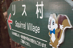 IMG_6819 (FreakSQuirreL) Tags:  gifu gifucastle