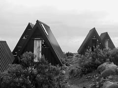 Kilimandjaro : Horombo camp (2nd day) (flowerbeetle) Tags: africa blackandwhite mountain kilimanjaro tanzania volcano noiretblanc safari schwarzweiss 2010 afrique volcan tanzanie kilimandjaro roofofafrica easternafrica afriquedelest cocacolaroad toitdelafrique