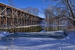 The Trestle Bridge at Hamilton (bill.d) Tags: bridge blue winter reflection water river michigan unitedstatesofamerica hamilton trainbridge adobecameraraw 2011 trestlebridge xti allegancounty topazadjust