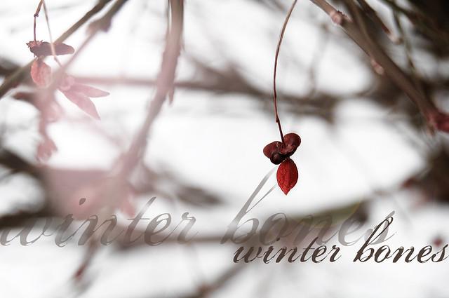 winter bones {3}