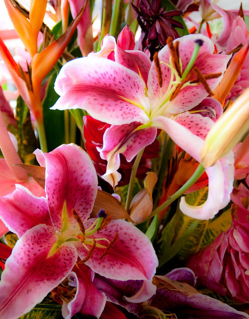 Flower bouquet, Saint-Lucia