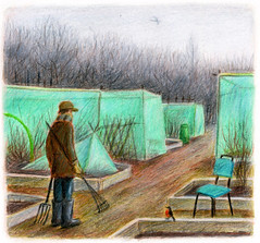 winter greens, plot 52 (greg beckersart) Tags: trees winter green gardening earth branches robins tools plastic forks netting wellingtons birdofprey warmclothes vegetablegarden raisedbeds greyskies gregbecker