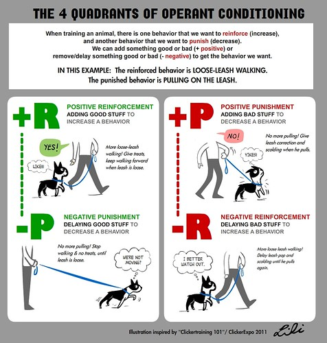 The Four Quadrants of Operant Conditioning