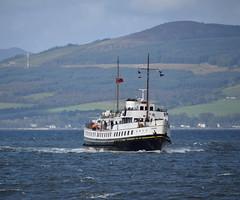 MV Balmoral approaching Largs (Russardo) Tags: mv balmoral approaching largs clyde scotland white funnels