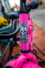 Skull X Bones (Karol A Olson) Tags: annapolis maryland historic downtown bicycle pink skull crossbones