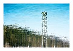 Reflection - Spiegelung (macplatti) Tags: bregenz vorarlberg austria aut