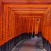 Toris (Inari, Japan)