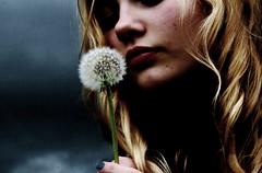 [フリー画像] 人物, 女性, タンポポ, 種子, 201012011500