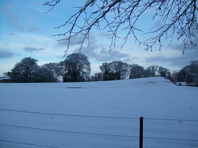 Winter at the Modern Art Galleries by National Galleries of Scotland