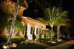 Pretty sights.... (cord1964) Tags: christmas xmas decorations night palms lights evening florida late notmyhouse holidayseason2010