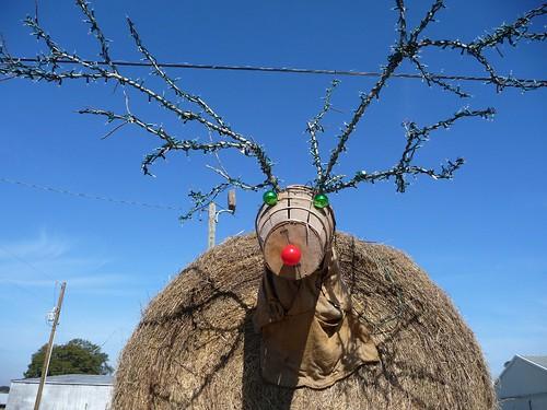 Hay Bale Reindeer in Jay, FL