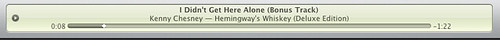 Kenny.Chesney.I.Didn't.Get.Here.Alone.Preview