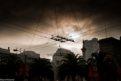 261/365 - San Francisco Muni Lines