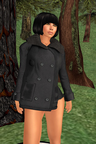 TOSL Bellies pea coat December 18 2010