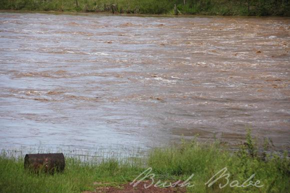 flood_0567