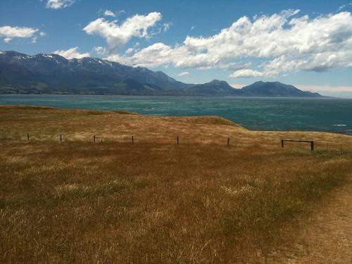 金色の草原とエメラルドブルーの海と雪の残る山