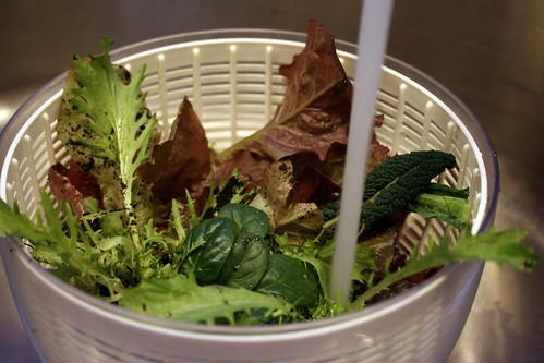 Christmas Day lettuce harvest