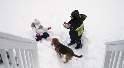 snow-dec272010