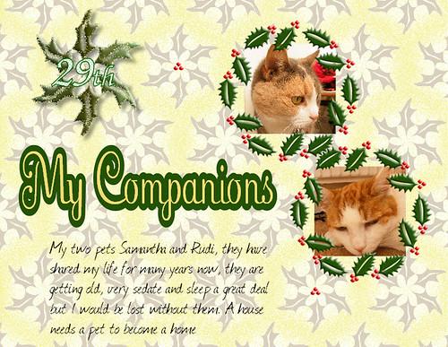 29th My Companions