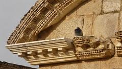 Teatro romano (Mrida, Badajoz) (Amaia eta Gotzon) Tags: roma architecture teatro arquitectura roman monumento escenario unesco romano badajoz merida monumentos romanempire marmol columna mr