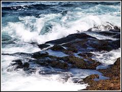 Sea Foam (Matt Lazzarini) Tags: cliff canada water saint newfoundland rocks waves capital stjohns olympus foam e300 eastern johns maritimes 43 oly fourthirds 1445mm easterncanada