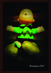Charlie Brown. (Anayaphotography2.0) Tags: brown verde green art nature toys sony cartoon charlie juguetes caricatura peluche a290 abtracto