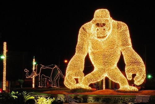 El Gorila del Zooberto