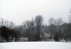 Snow_122710b