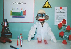 Sock Monkey Chemist (monkeymoments) Tags: chemistry laboratory sockmonkeys monkeys microscope mothersday valentinesday molecules testtubes chemist chemicalreaction periodictable sockmonkeyfun