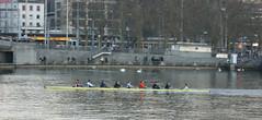 Oars / Ruderer (Hellebardius) Tags: schweiz zurich zrich oars zrichsee zurigo ruderer