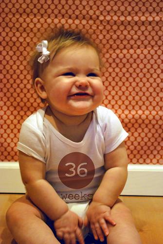 Lilah: 36 weeks old