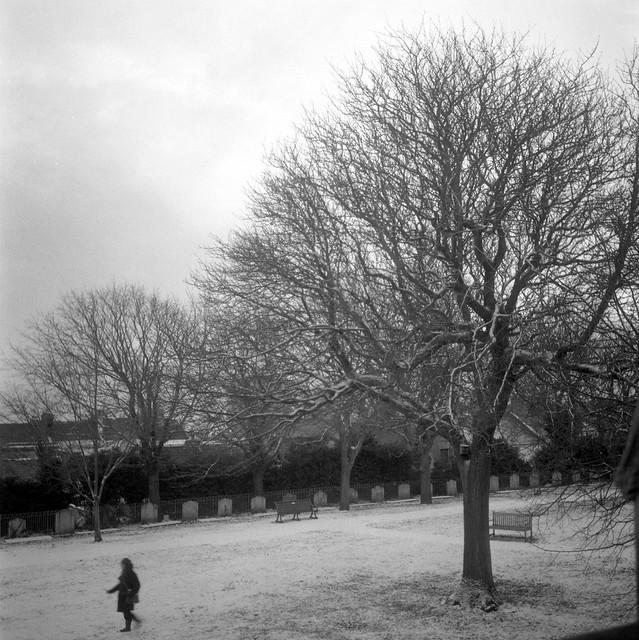 Snowy Graveyard