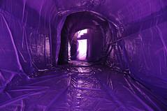 . (Denisse G.) Tags: color lights arte interior indoor denisse arquitecture espacio instalacin efmero penique