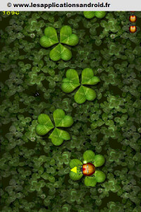 beetlejump2