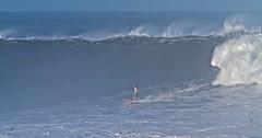 Surfing Monsters (rnakama_photos) Tags: surfing waimea waimeabay bigwavesurfing bigwave bigsurf ef70200mmf28lisusm january202011