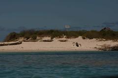 Mozambique-4435
